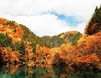 最美的风景留给最美的岁月——迷失在五彩的九寨沟