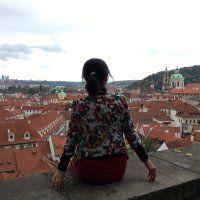 游布拉格城堡