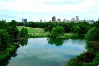 北美行之纽约篇之四--漫步中央公园