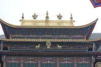 瞻仰塔尔寺