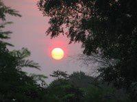 蒲甘的太阳(四)
